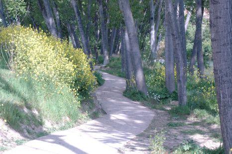 camino junto al Ebro