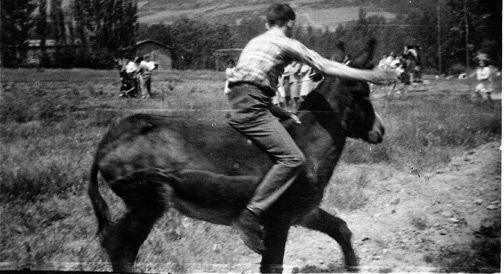 Carreras de burros, en fiestas de Valgañón