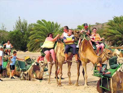 Contrapeso para equilibrar la carga familiar en el desierto