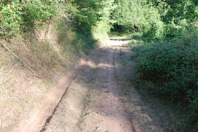 Caminos de Ollora