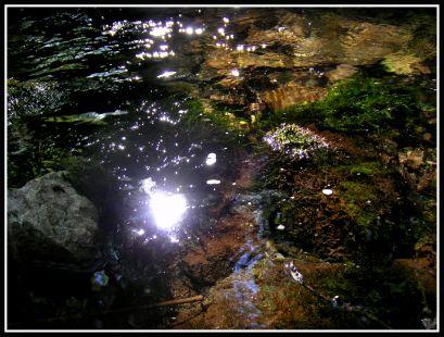 Reflejo en el rio