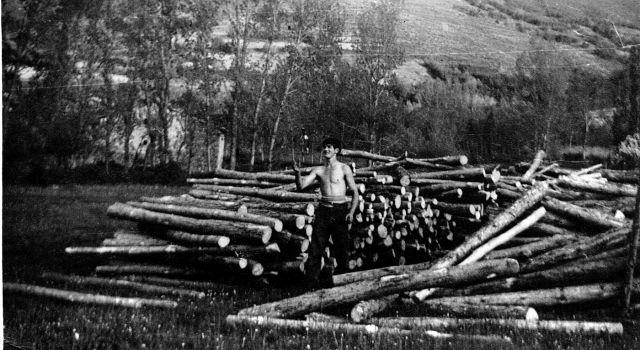 Derribando árboles en los años 69, Valgañón