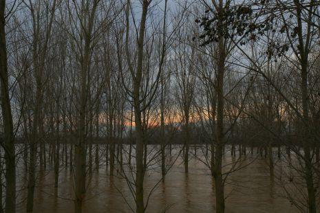 Ebro Desbordado