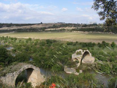 Puente mantible