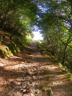 Ruta de la Cueva del Santo1