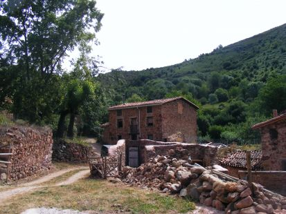 Turza5