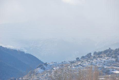Dias de Nieve