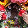 entre flores Reina Madre