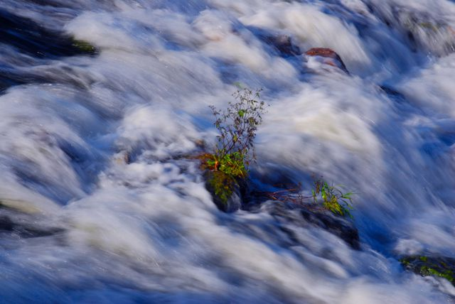 Entre aguas
