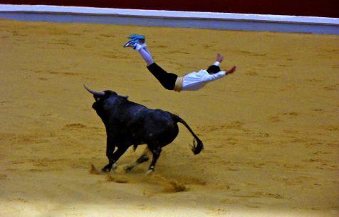 Salto de vaquillas