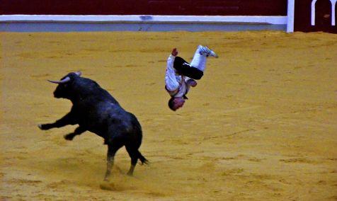 Salto de toro y recortador