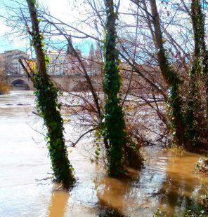 El Ebro a su paso por Logroño