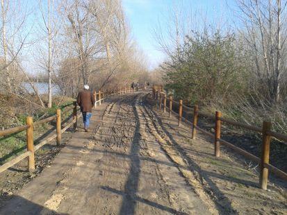 Un tramo del paseo del Ebro, intransitable