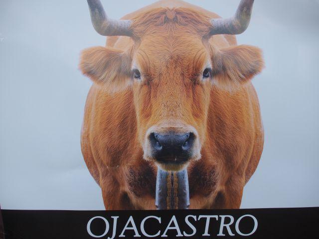 Fiesta del ganado en Ojacastro