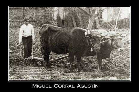 Guiando el arado en Valgañón