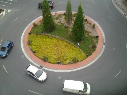 Arbustos nuevos para la rotonda