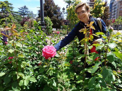 Las rosas del Espolón