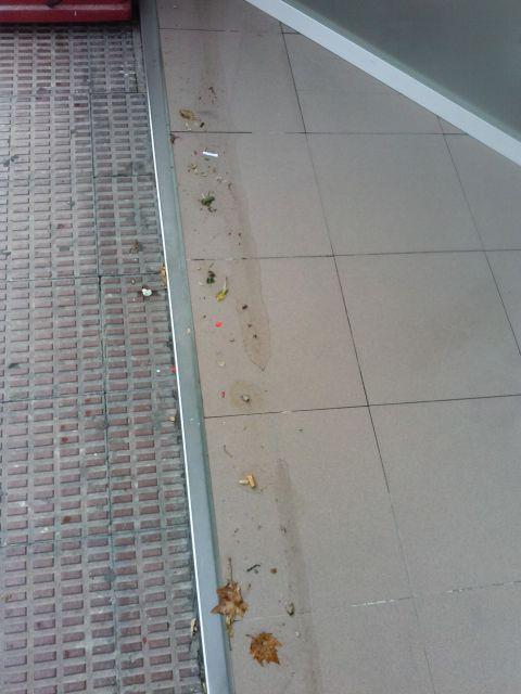 Regar después de limpiar el suelo